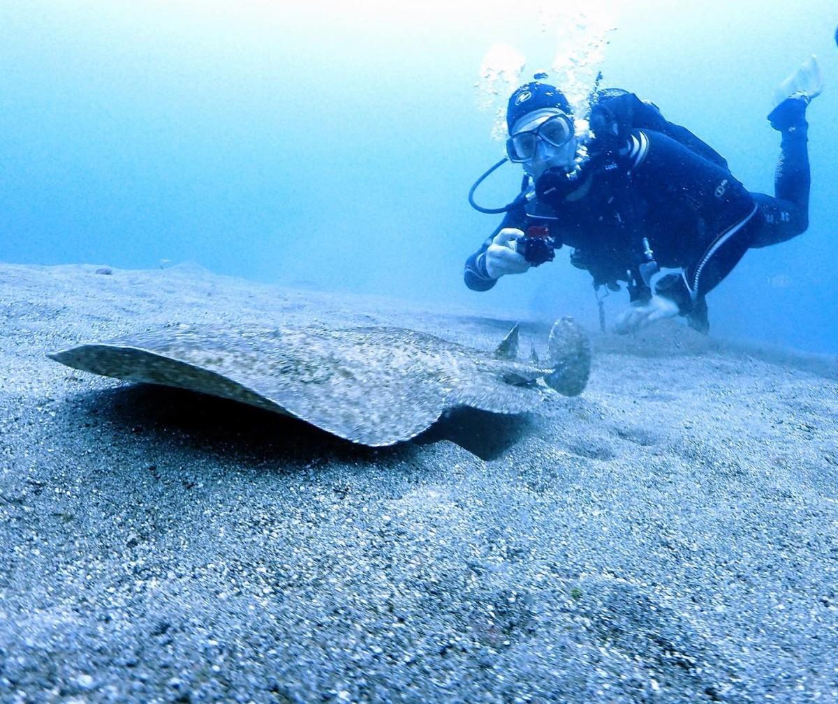 Manta Diving Lanzarote - alt_image_gallery