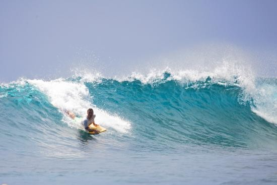 Monkey Surfing Lembongan - alt_image_gallery