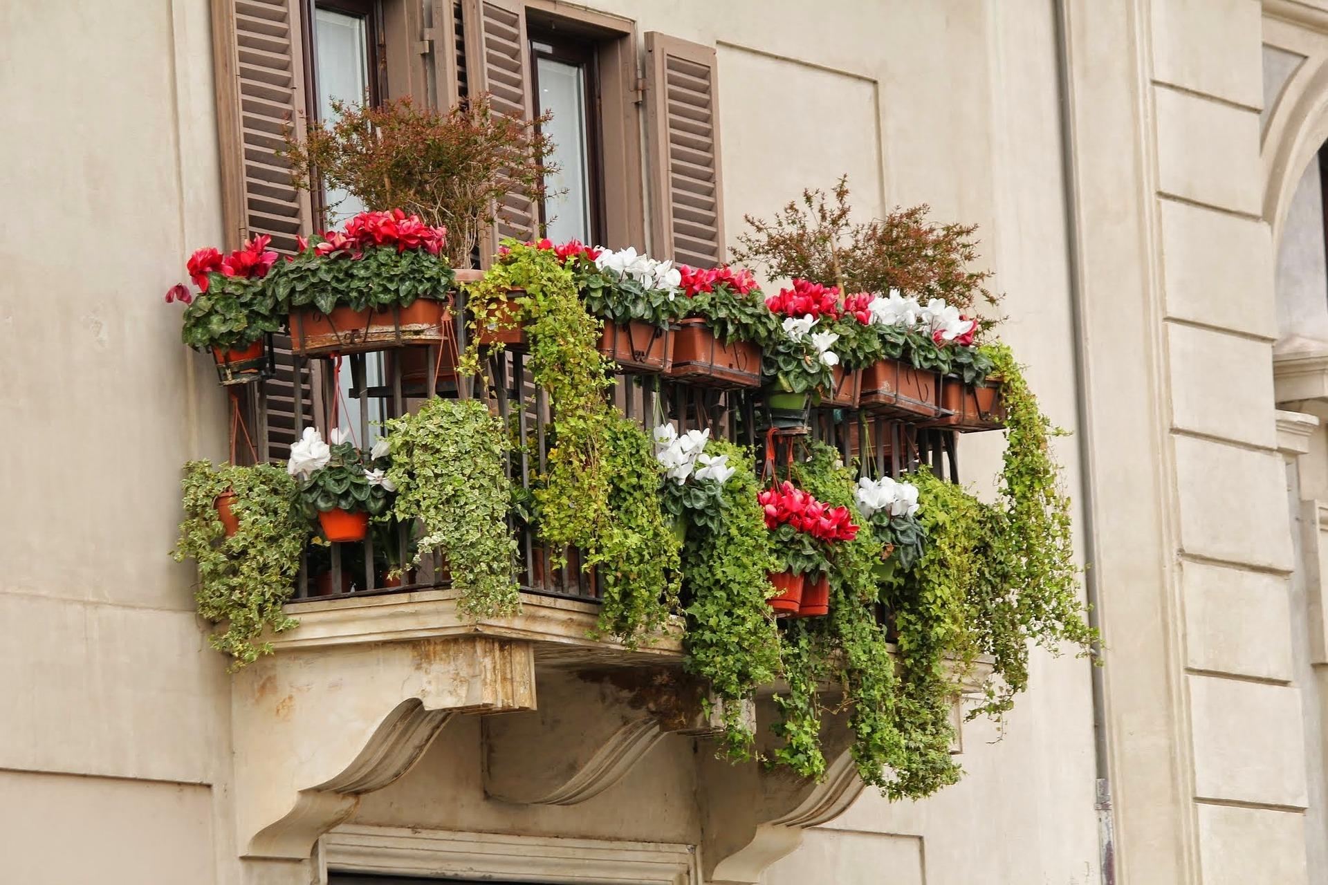 5_Conseils_pour_un_jardin_de_balcon_parfait
