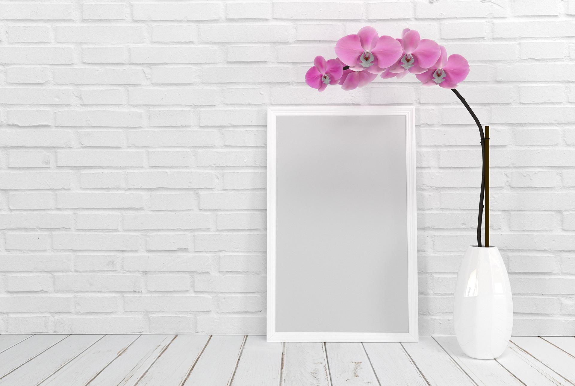 Comment_prendre_soin_des_orchidées_par_temps_chaud