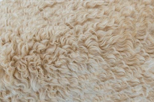 3_façons_d_utiliser_les_tapis_en_peau_de_mouton