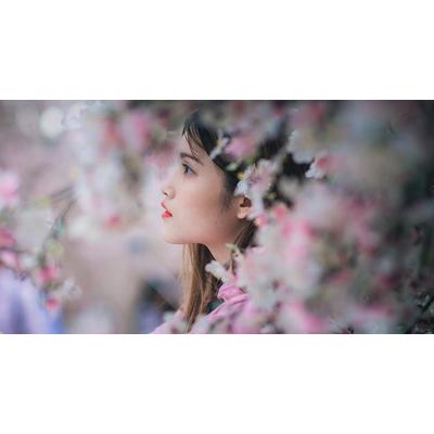 Peach Sakura Fragrance - Ideal for shower gel