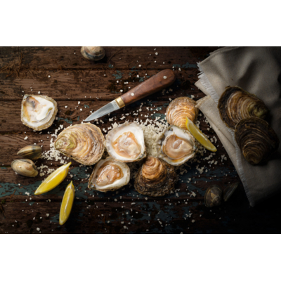 10 kg Flat Oysters n°2