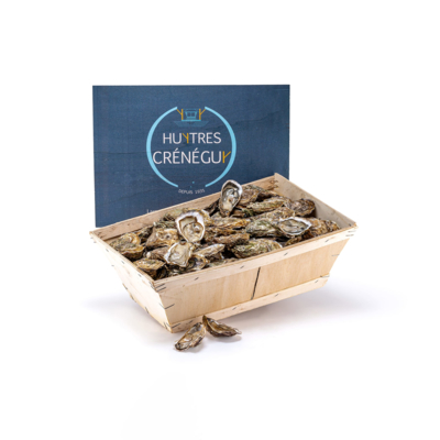 10kg Basket Cupped Oyster N°3