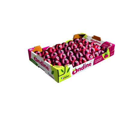 FRUITS PLATS ONDINE