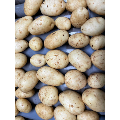 Brushed or washed potatoes