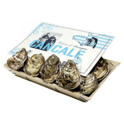 Fine oysters - North Brittany /  Cancale