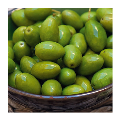 Picholines Olives from Provence