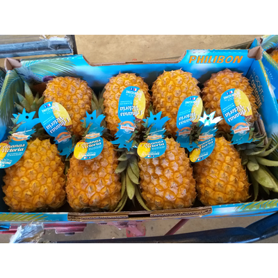 Victoria pineapple from Reunion Island