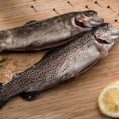 Frozen trout – White flesh