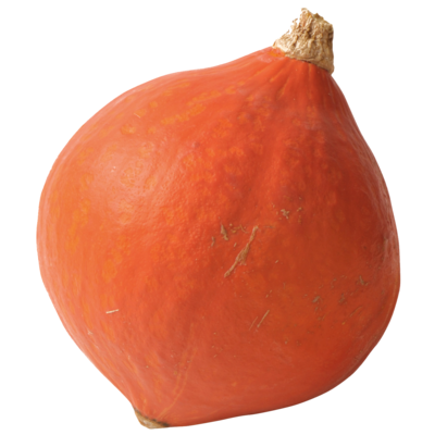 Squash (Potimarron, Butternut)