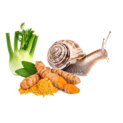 Ingredient for intestinal comfort