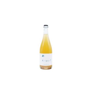 AINGURA Premium Organic Brut Cider