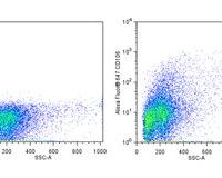 MS CD106 ALEXA 647 0.05MG 429 (MVCAM.A)