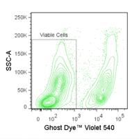 Ghost Dye Violet 540