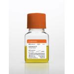 50 mL Amphotericin B, Liquid 250 microg/mL solubilized 6 X 50 mL