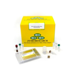 Quick-16S Plus NGS Library Prep Kit (V3-V4) with Primer Plate D 96 rxns