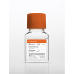 100 mL Sodium Pyruvate, Liquid 100 mM Solution with 8.5 g/L NaCI 6 x 100 mL