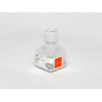 10 mL ITS (Insulin-Transferrin-Selenium) 10 mL