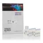 MitoProbe JC-1 Assay Kit