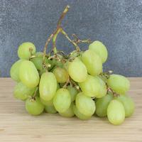Raisin Blanc, Italien 100%, colis de 8kg