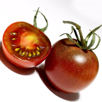Tomate kumato noire catégorie 1, colis de 3 kg