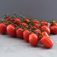 Tomate Grappe Datterino