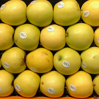 Pomme Golden Bio Rendez-Vous Nature