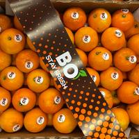 Orange Valencia 9,5kg Brio