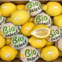 Citron Bio 1kg