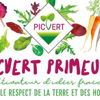 Laurier 25G Bqt Picvert