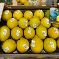 Citron Bio, Colis De 8Kg