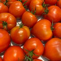 Tomate allongée reine de cœur catégorie 2, colis de 3,5 kg