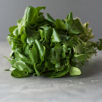 Salade cresson catégorie 1, colis de 6 bottes