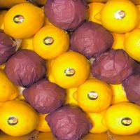 Citron  Eureka Essencia Cal. 35