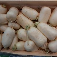 NAVET MARTEAU, colis de 5kg