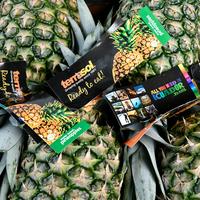 Ananas  Extra Sweet Katopé - Fyffes - Bateau