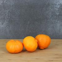 Clementine Esbal