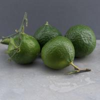 Mandarine - Verte - ITA - Rais