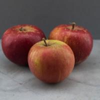 Pomme à Jus - Cal :80-100 - FRA - Rais