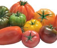 Tomate D'Antan x Colis 1 Kg FRANCE   cat.1