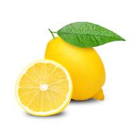 Citron Feuille Plt Sans Pepin