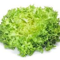 Salade Frisee Piece ESPAGNE   cat.1