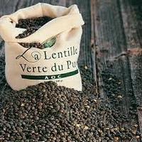 Lentille Du Puy  AOC X 500 Gr SABA FRANCE   cat.1