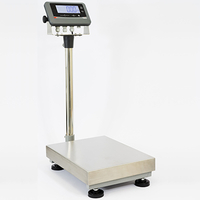 Balance C 5 R1A 600x450 300kg/20g HML