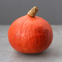 Courge - Potimarron - Orange - FRA - Bio