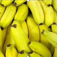 Banane Pays Cavendish