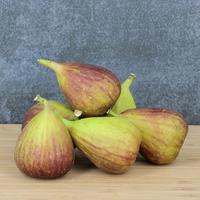 Figues Higos