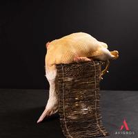 Canard effilé,3 pièces colis de 10kg