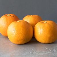 Orange Bio Valencia
